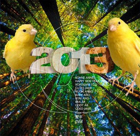 MEILLEURS VOEUX 2013 !!
