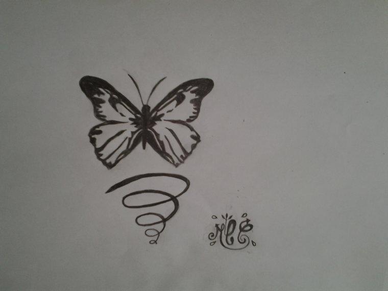 dessin d' un papillon ♥