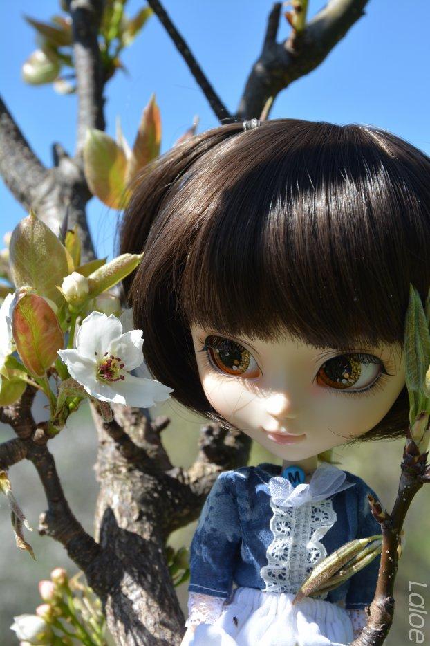 Ma deuxième pullip-Miya