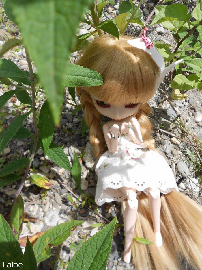 Photos bonus∞