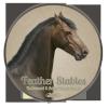 Feather-Fields