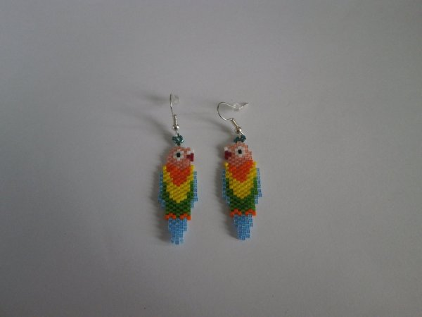 "Boucles d'oreilles "" perroquets ""."