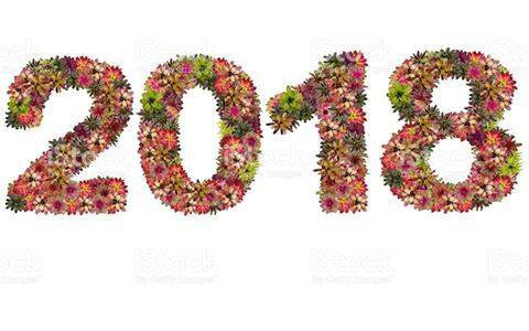Je vous souhaite une année riche en créations florales et je vous adresse mes meilleurs voeux pour cette nouvelle année !
