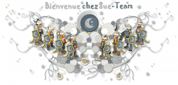 Bienvenue Sur Le Blog de la Sue-Team !