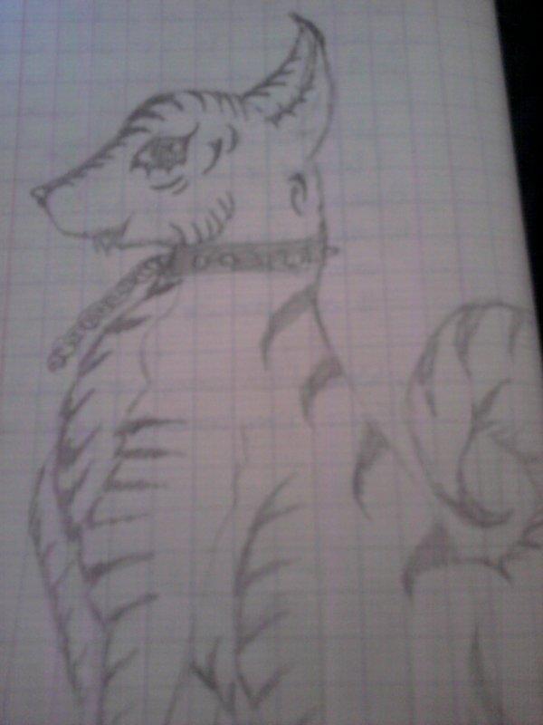 My draw~