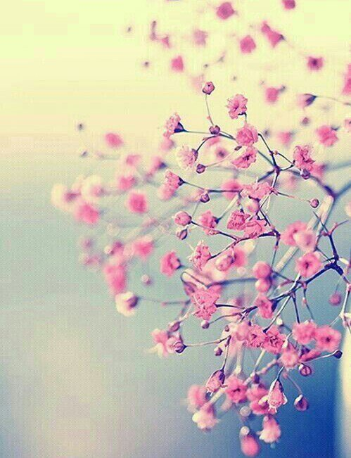 Les rêves sont des messages qui nous sont envoyés dans la nuit. Si nous les oublions au réveil, ces messages sont définitivement perdus.