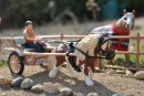 Photo de schleich-chevaux84