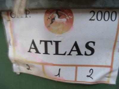 mes 3 bb pour la vie  Atlas/Ranger/Omar