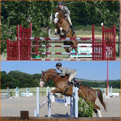 Lance ton coeur au dessus de l'obstacle et le cheval suivra...#16