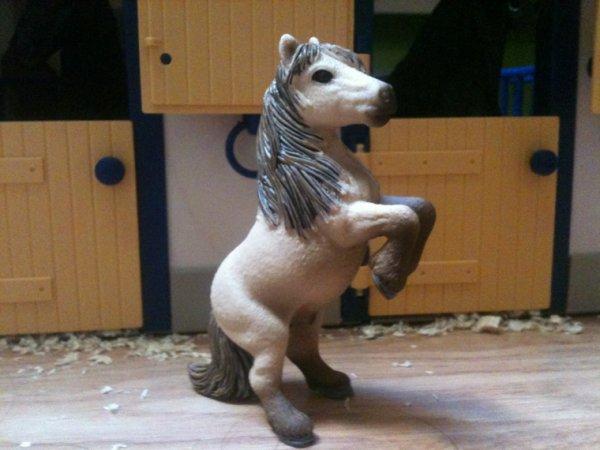 Nos chevaux - Nesquik