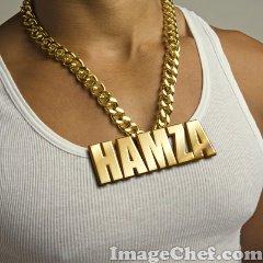 hamza2010