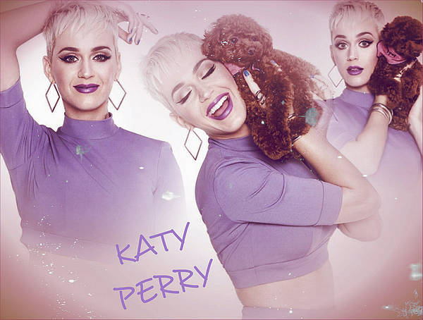 Welcome In The World Of KatyCat's