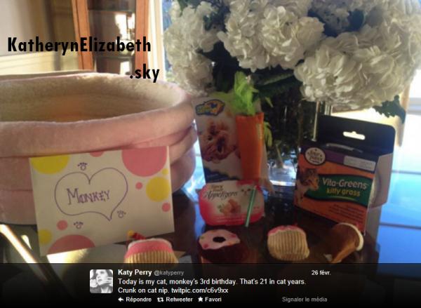 26/02 : Pleins de cadeaux pour l'anniversaire de Monkey, le chat de Katy // Katy est nomminée aux Nick Kid's Choice Awards 2013 ! // + INFO