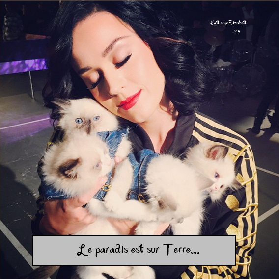 +  31.10 : Halloween as a Cheetos // 30.10 : Hello Kitty Con // 25.10 : BDAY PARTY // + Katy chez Becky G (Clip) // + INSTAGRAM // + INFOS