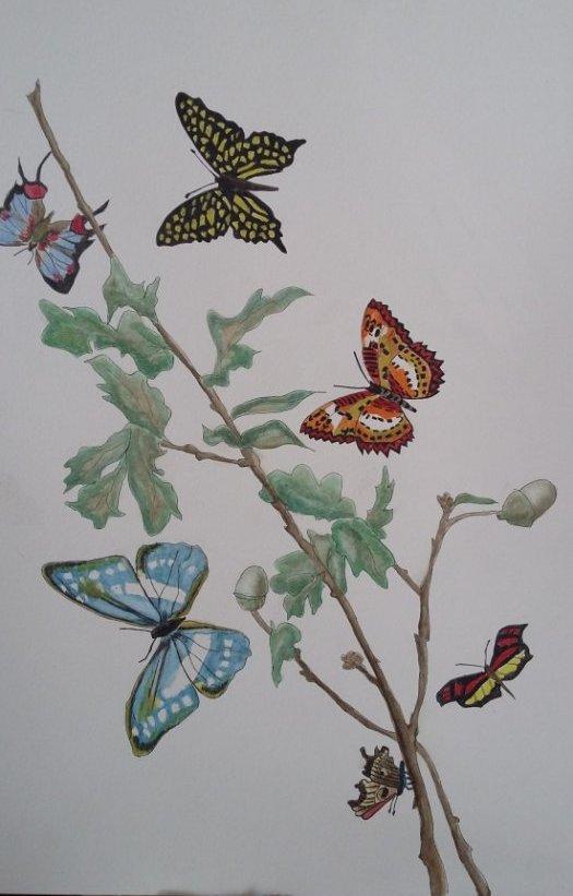Envollée de papillons (2014)