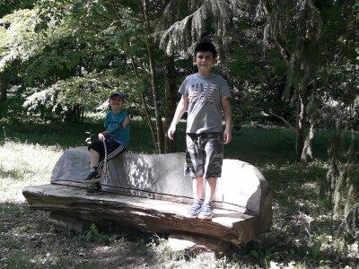Arboretum des Barres!
