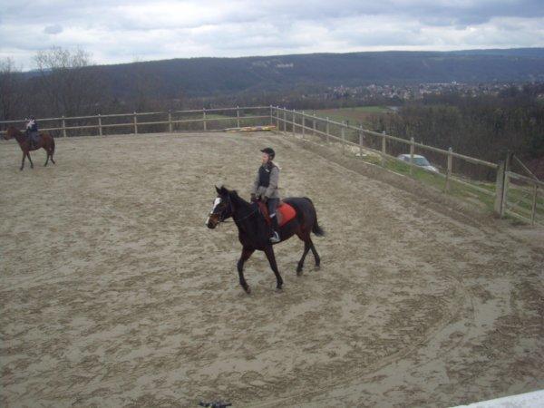 Mon cheval préféré Image désolé pour la qualité