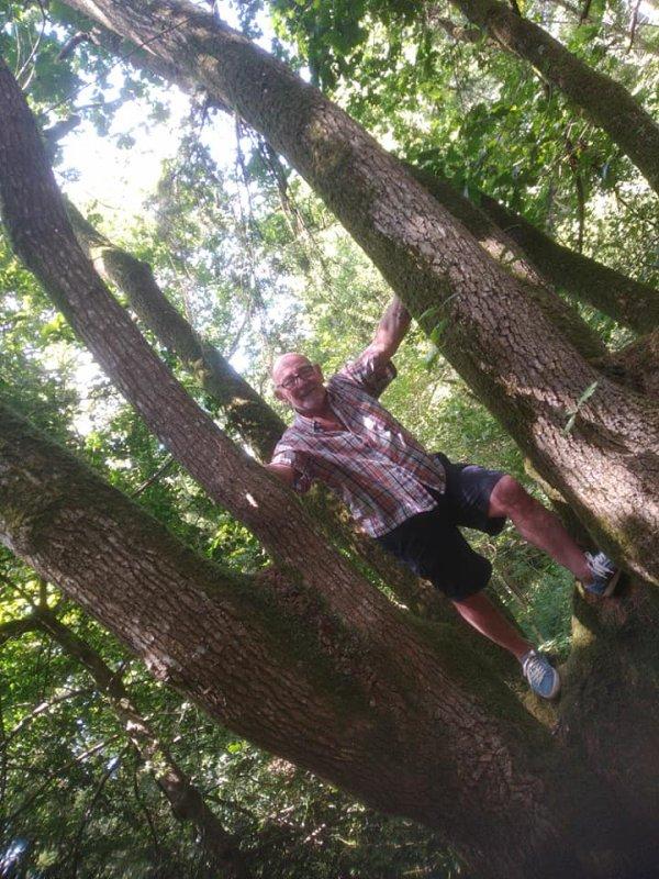 je suis dans un arbre particulier