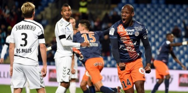 2015 Ligue 1 J14 MONTPELLIER REIMS 3-1, le 21/11/2015