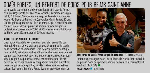 2019 Ex-rémois : PANIQUE chez les PIGEONS , FORTES est de RETOUR, le 29/10/2019