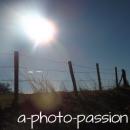 Photo de a-photo-passion