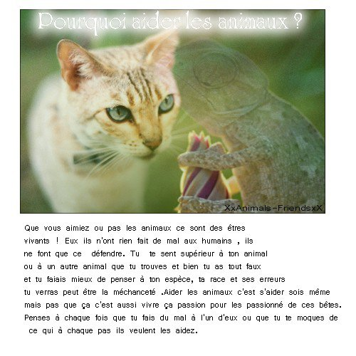 Pourquoi aider les animaux ?