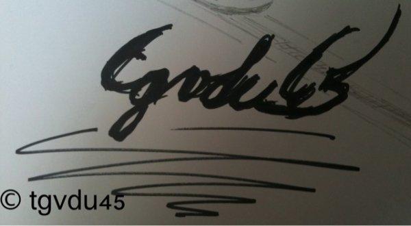 tgvdu45, nouveau logo