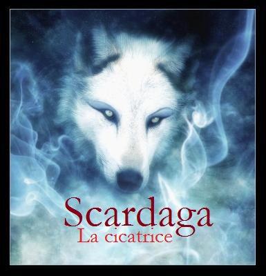 Bienvenue sur mon blog musik, ici c'est Scardaga rappeur du 49