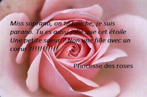 La ciactrice d'un loup / Princesse des Roses (2013)