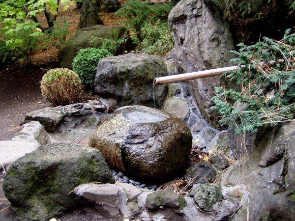 Wasabi & le fléau des escargots - Part 1