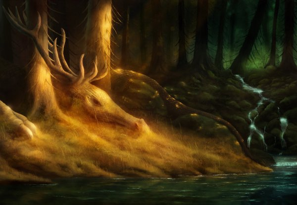 Le rêve des Dragons