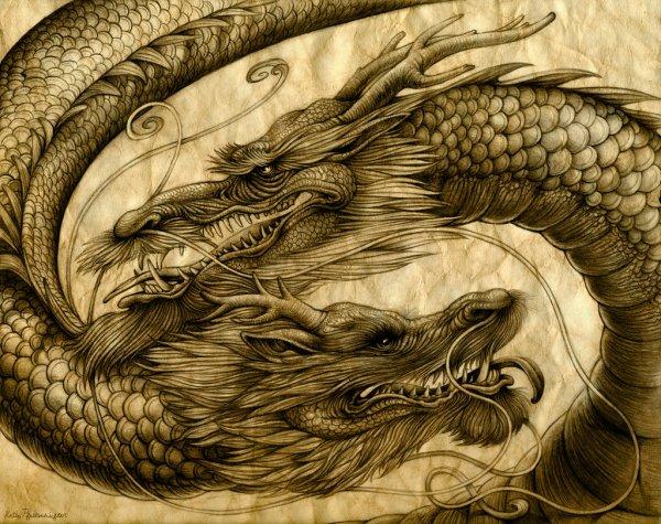 Le rêve des Dragon - Part 15