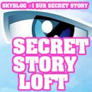 Photo de SecretStory-LoftMusic