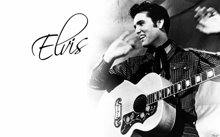 Elvis mon idole