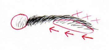 Les sourcils : Un détail a ne pas négliger !