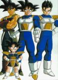 Photo de super-vegeta-do