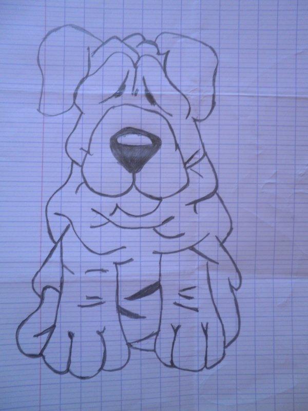Un chien Pas comme Les autres !!!!(=