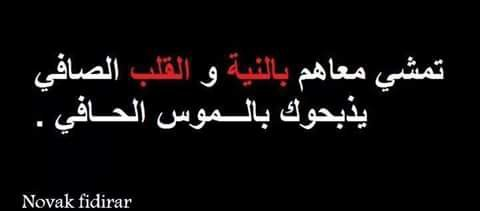 ls arabe