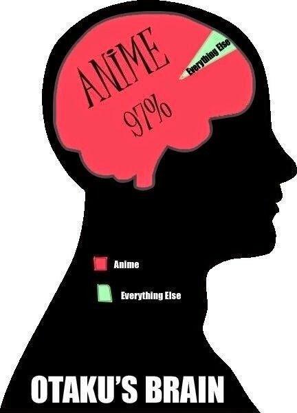 Mon cerveau *~*