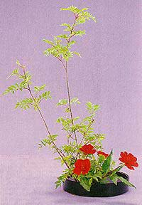 Ikebana (生花 - いけばな) - Art floral Japonais