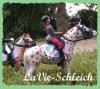 LaVie-Schleich