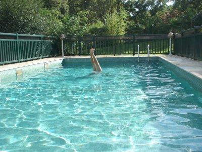 greg a fait le fou aussi dans la piscine trop belle kla et gogone. Black Bedroom Furniture Sets. Home Design Ideas