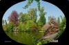 Oiseau avec paysage