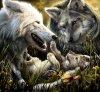 ptit-wolf16