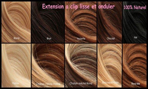 Les Style Et Couleur Des Extension ( Pour pose Com's )