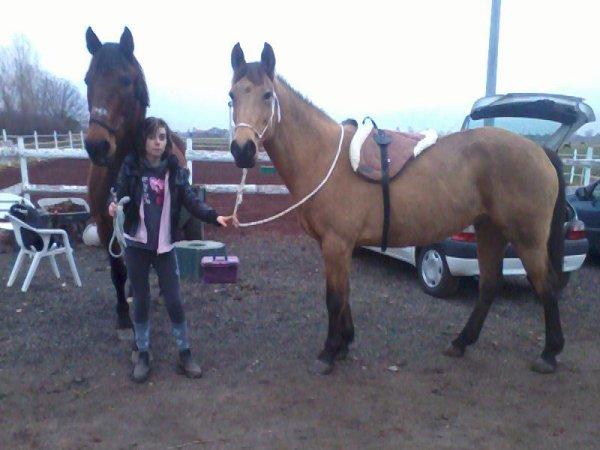 Le respect du cheval, c'est la fondation de la liberté .. <3