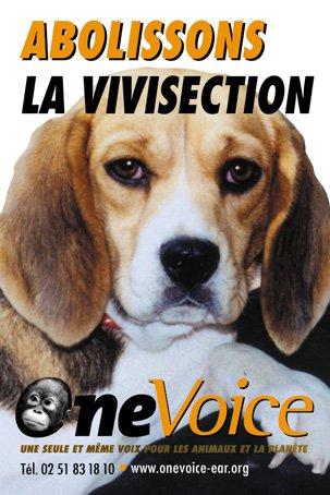 Article 5: La vivisection
