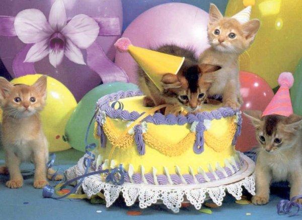 Manon mon amie je te souhaite un magnifique anniversaire.