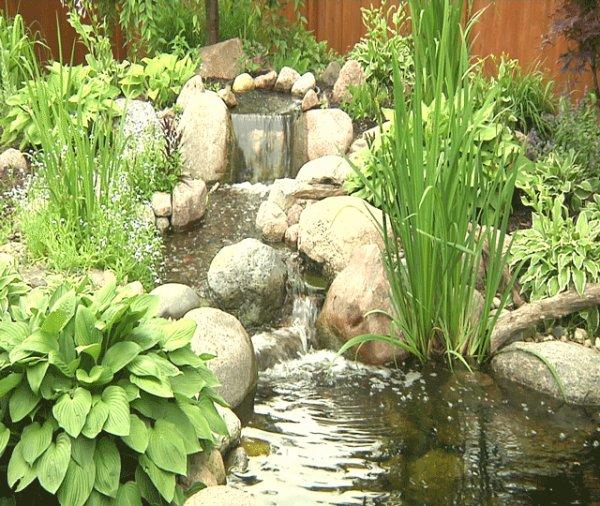 Charmantes petites cascades et jolis petits courants d'eau.