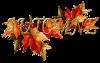 Pour embaumer votre matinée et rendre encore plus belle votre journée je vous offre les plus jolies couleurs de l'automne.